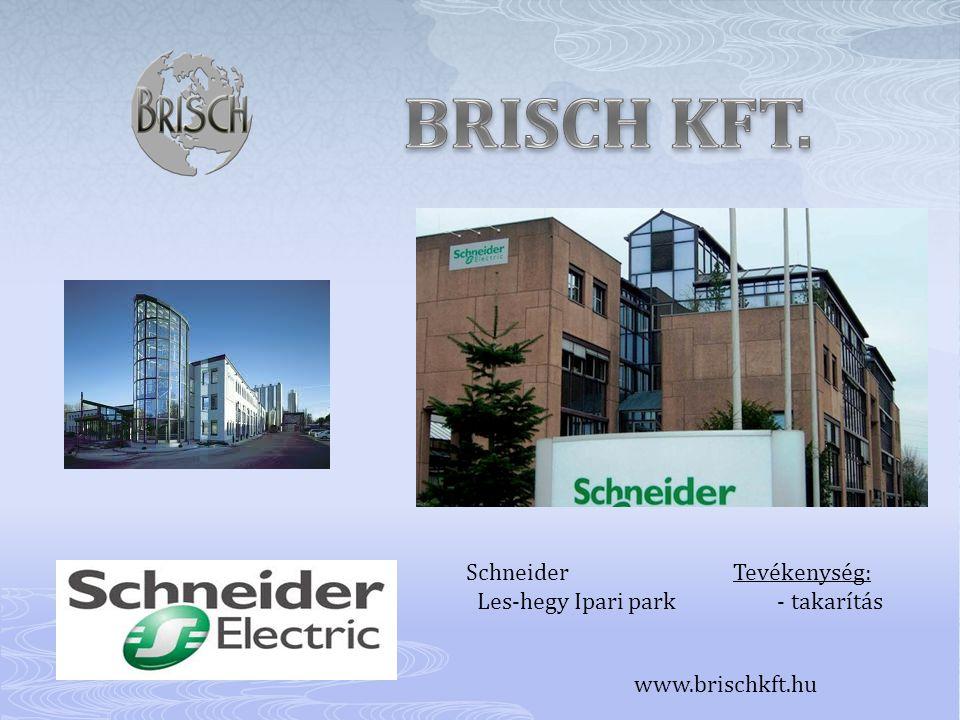 BRISCH KFT. Schneider Tevékenység: Les-hegy Ipari park - takarítás