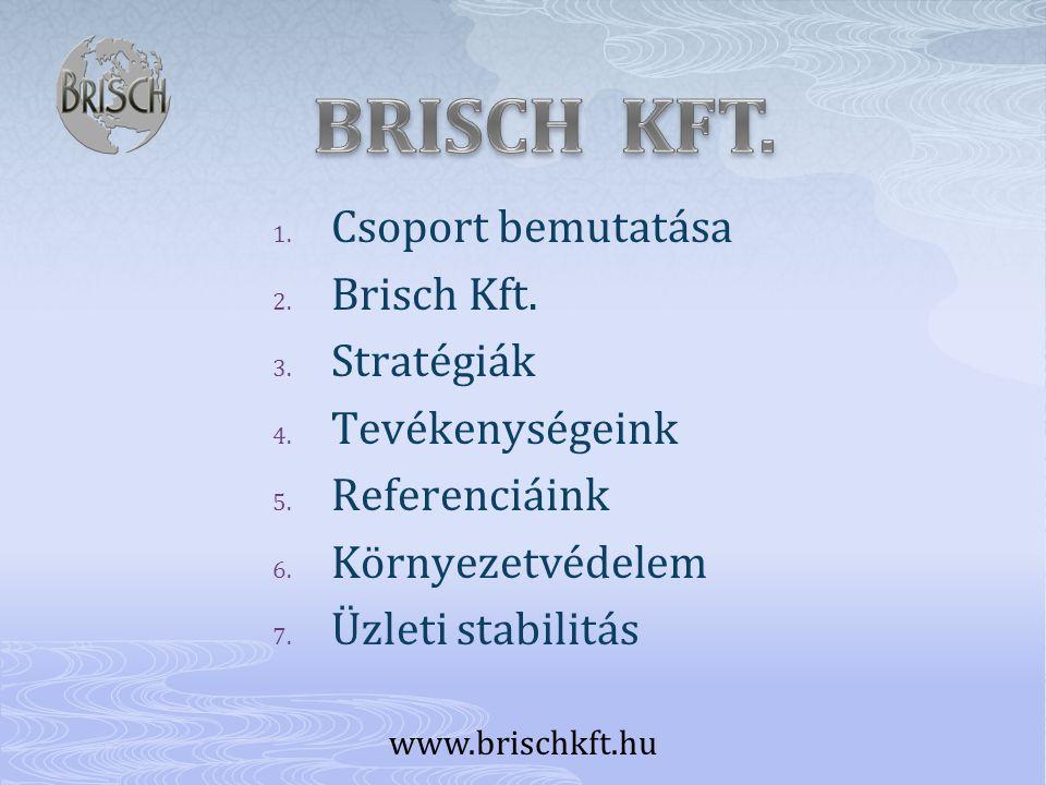 BRISCH KFT. Csoport bemutatása Brisch Kft. Stratégiák Tevékenységeink