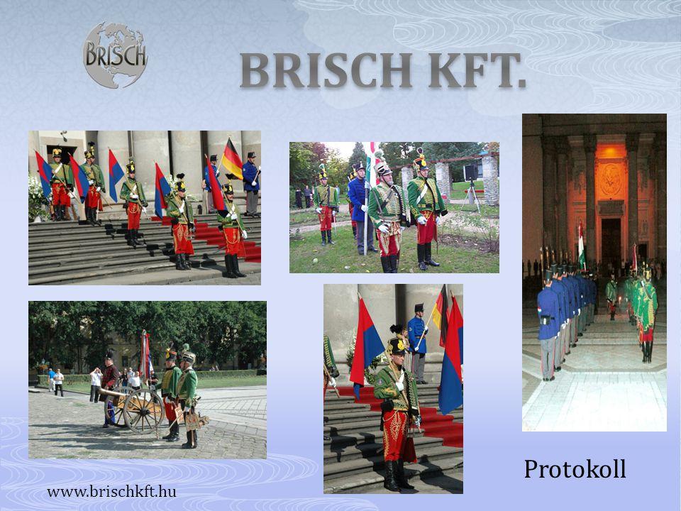 BRISCH KFT. Protokoll www.brischkft.hu