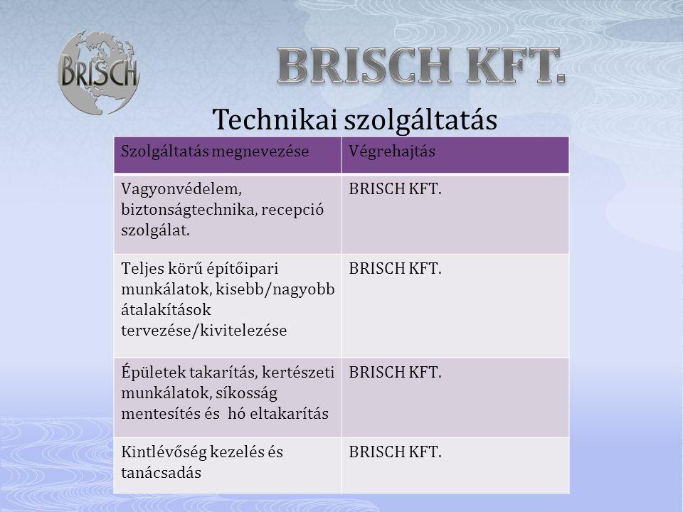 BRISCH KFT. Technikai szolgáltatás Szolgáltatás megnevezése