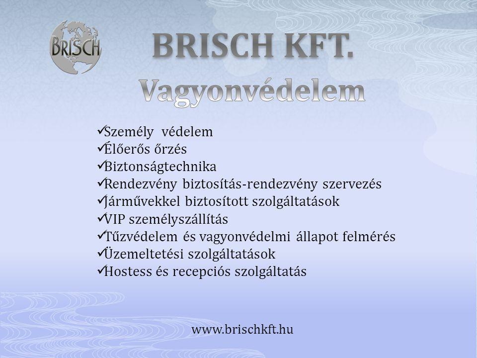 BRISCH KFT. Vagyonvédelem Személy védelem Élőerős őrzés