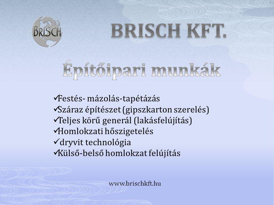 BRISCH KFT. Építőipari munkák Festés- mázolás-tapétázás