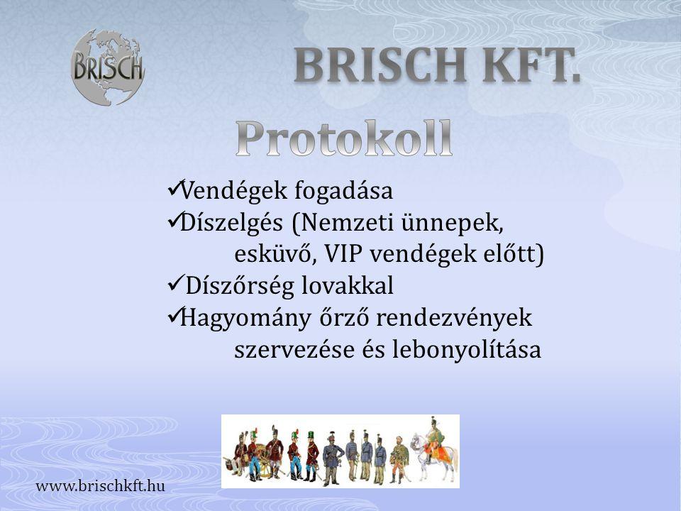 BRISCH KFT. Protokoll Vendégek fogadása