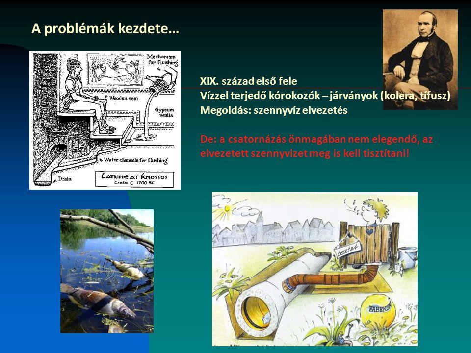 A problémák kezdete… XIX. század első fele