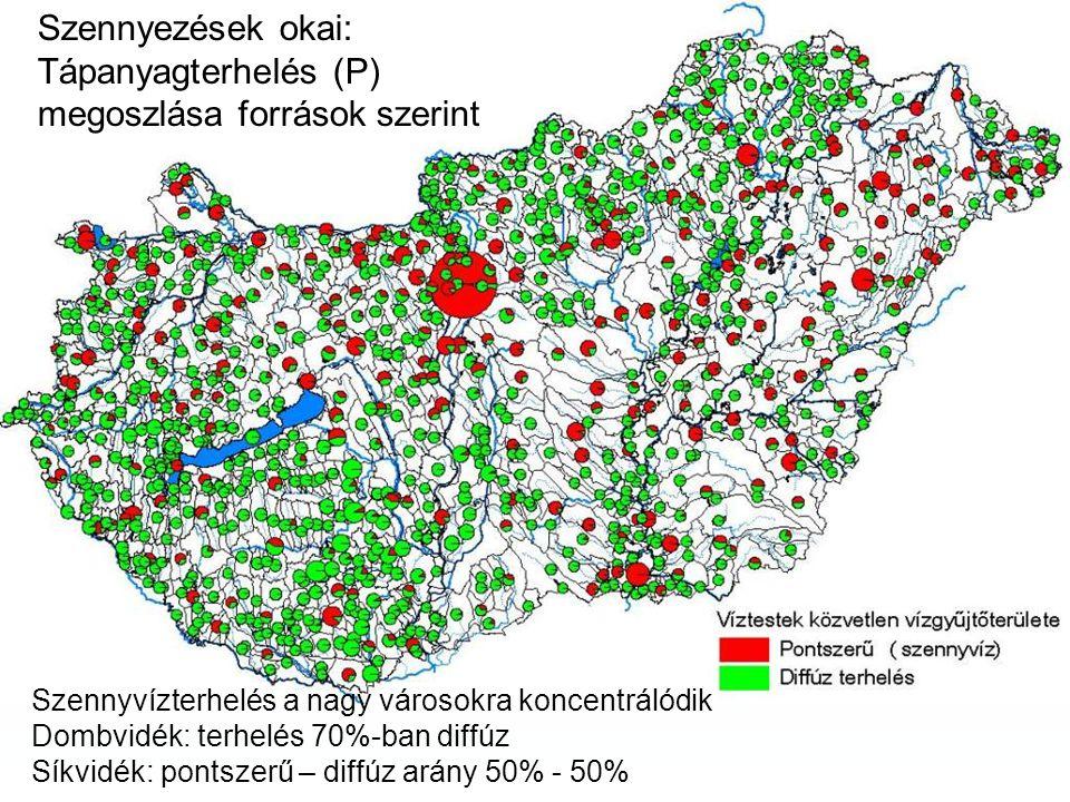 Szennyezések okai: Tápanyagterhelés (P) megoszlása források szerint