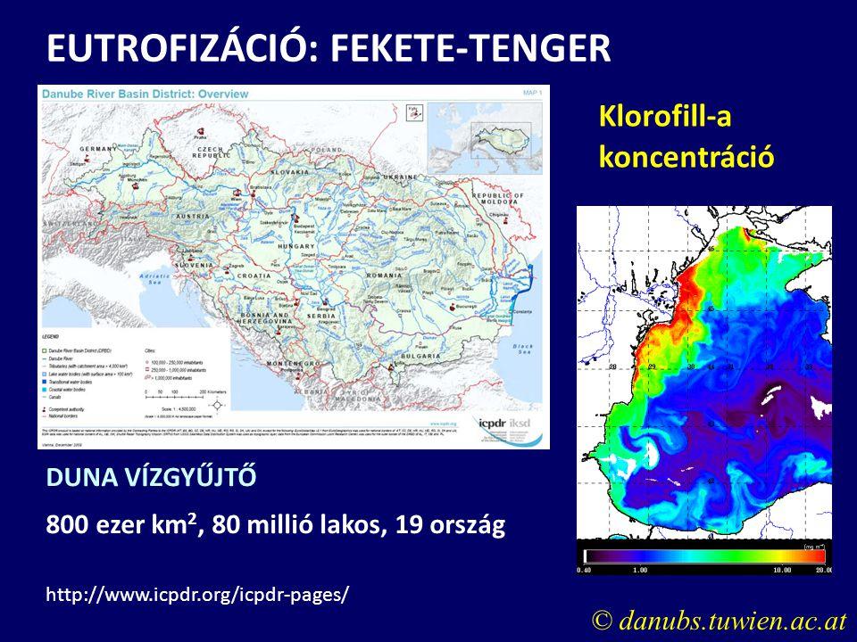 EUTROFIZÁCIÓ: FEKETE-TENGER
