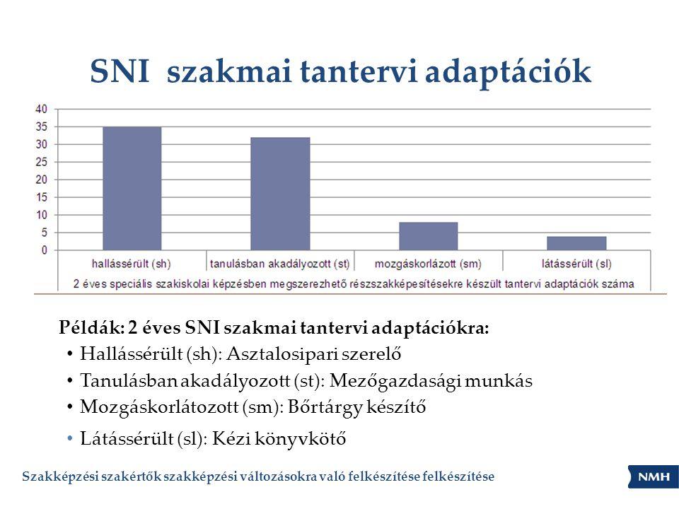 SNI szakmai tantervi adaptációk