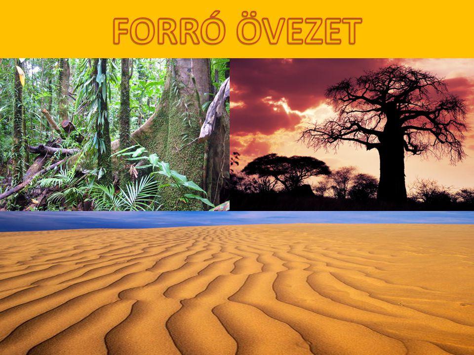 FORRÓ ÖVEZET