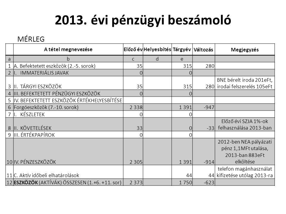 2013. évi pénzügyi beszámoló