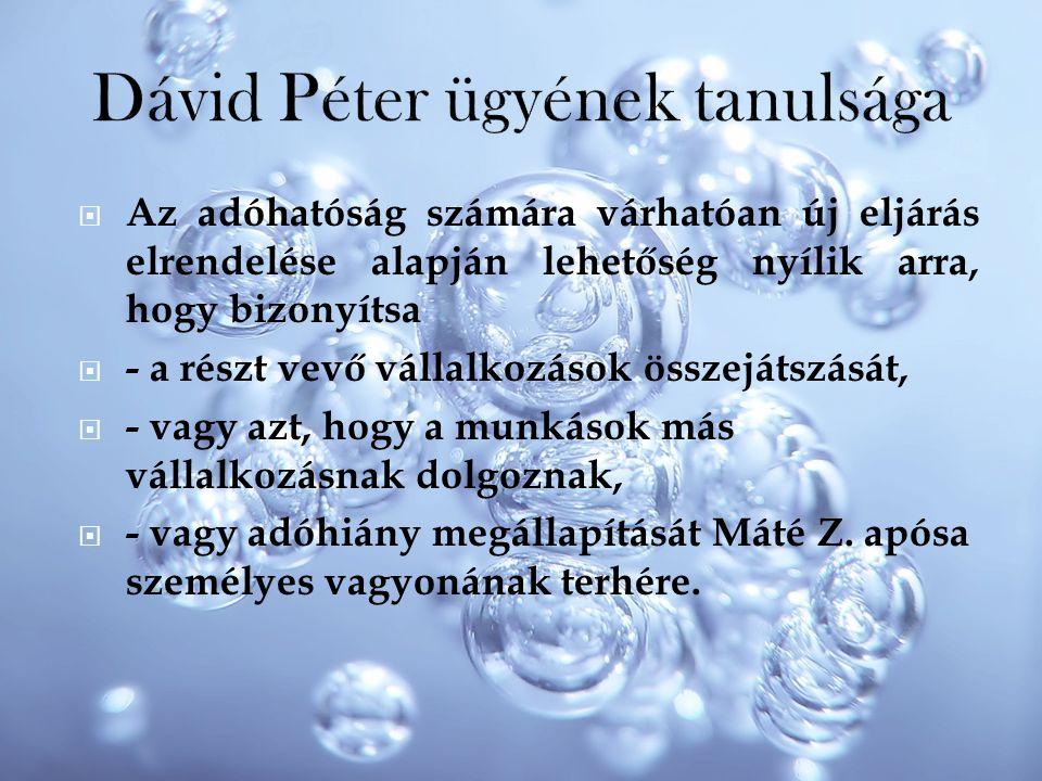 Dávid Péter ügyének tanulsága