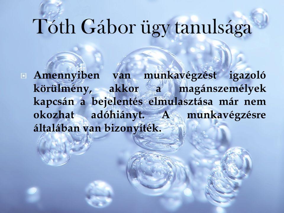 Tóth Gábor ügy tanulsága