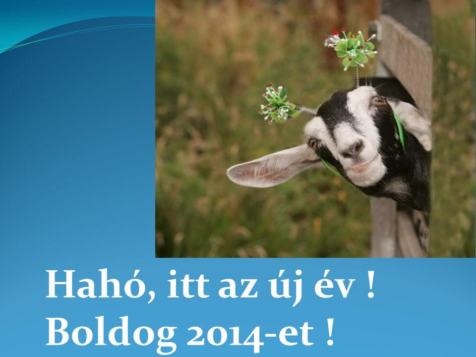 Hahó, itt az új év ! Boldog 2014-et !