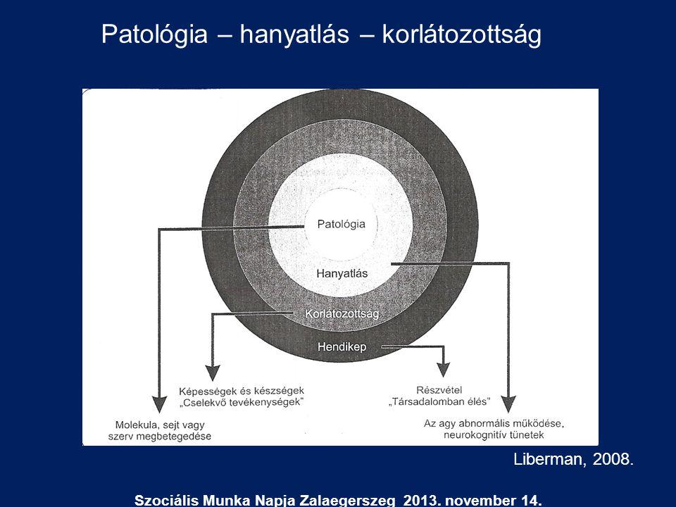 Szociális Munka Napja Zalaegerszeg 2013. november 14.