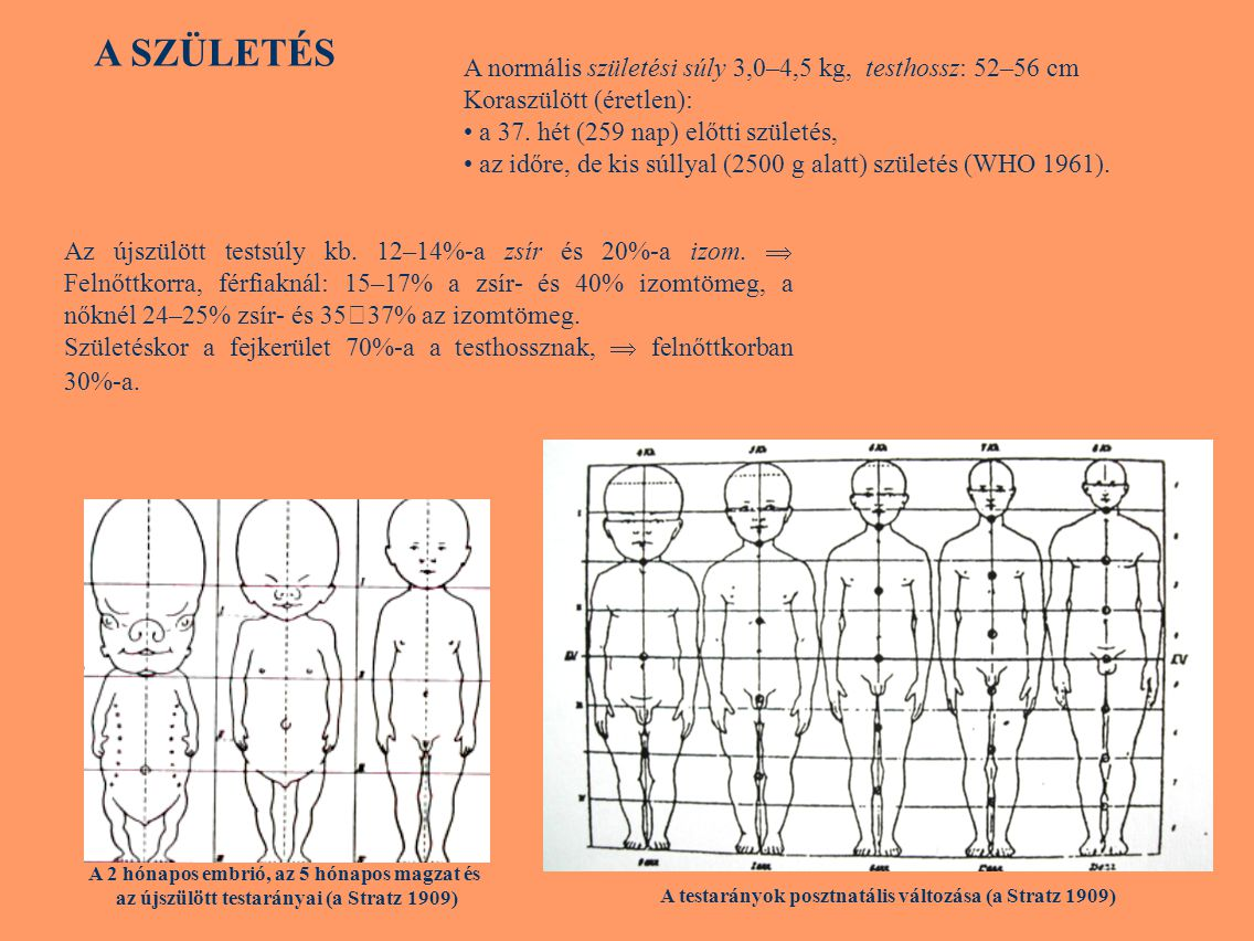 A SZÜLETÉS A normális születési súly 3,0–4,5 kg, testhossz: 52–56 cm