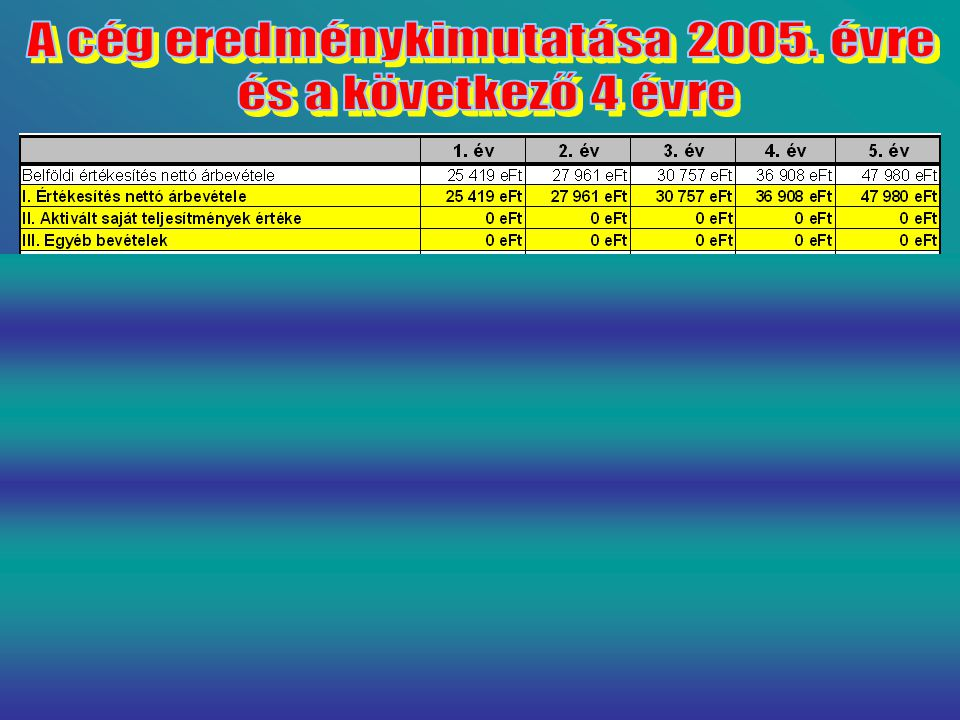 A cég eredménykimutatása 2005. évre