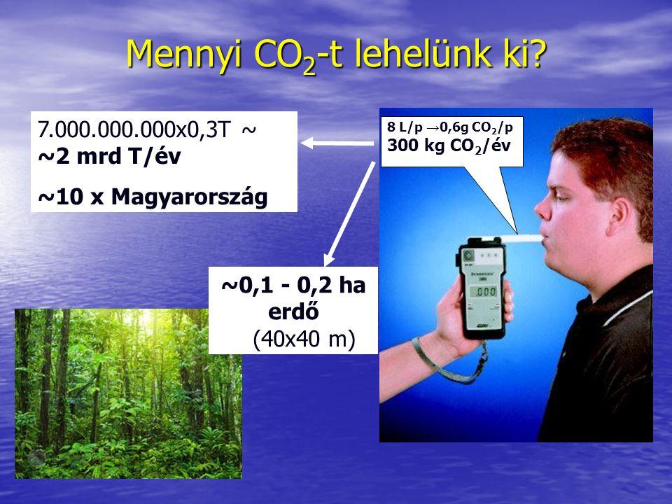 Mennyi CO2-t lehelünk ki