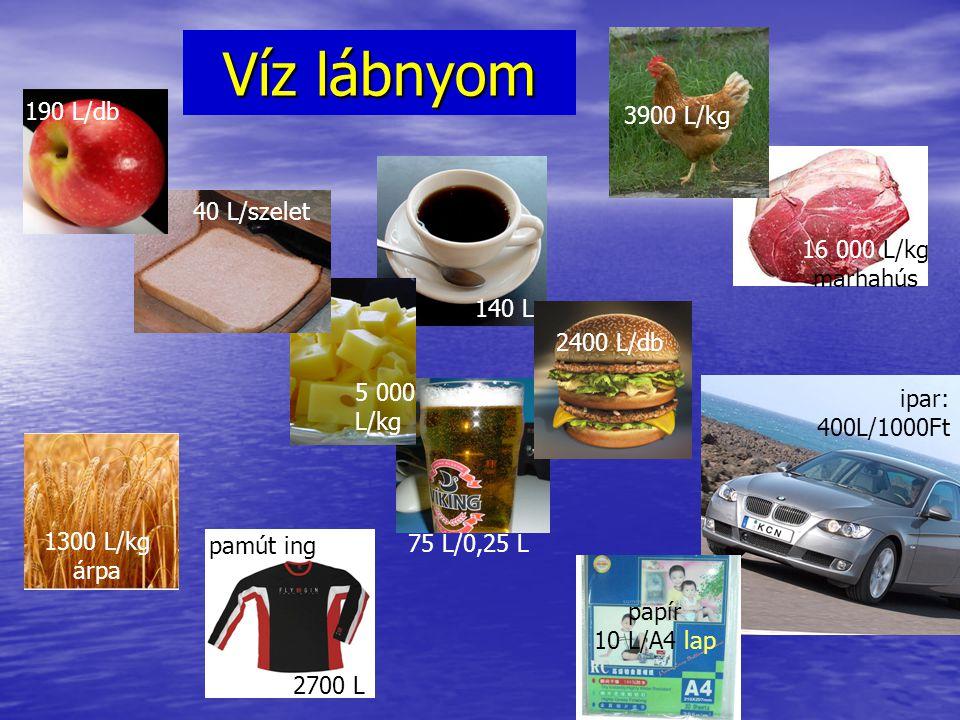 Víz lábnyom 190 L/db 3900 L/kg 40 L/szelet 16 000 L/kg marhahús 140 L