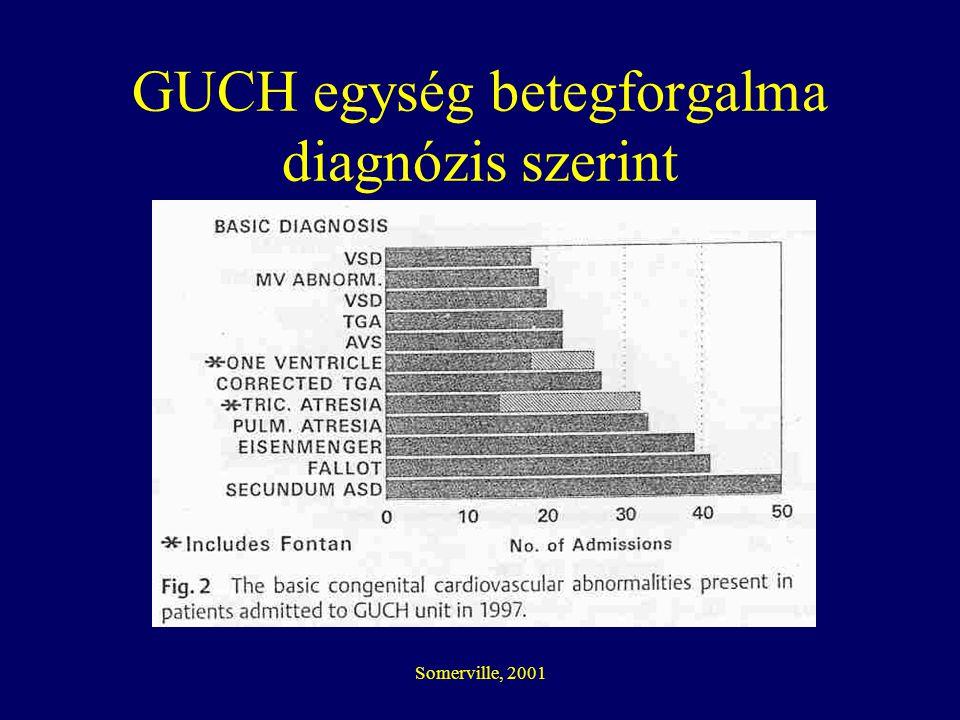 GUCH egység betegforgalma diagnózis szerint