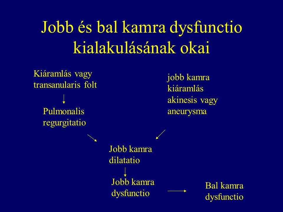 Jobb és bal kamra dysfunctio kialakulásának okai