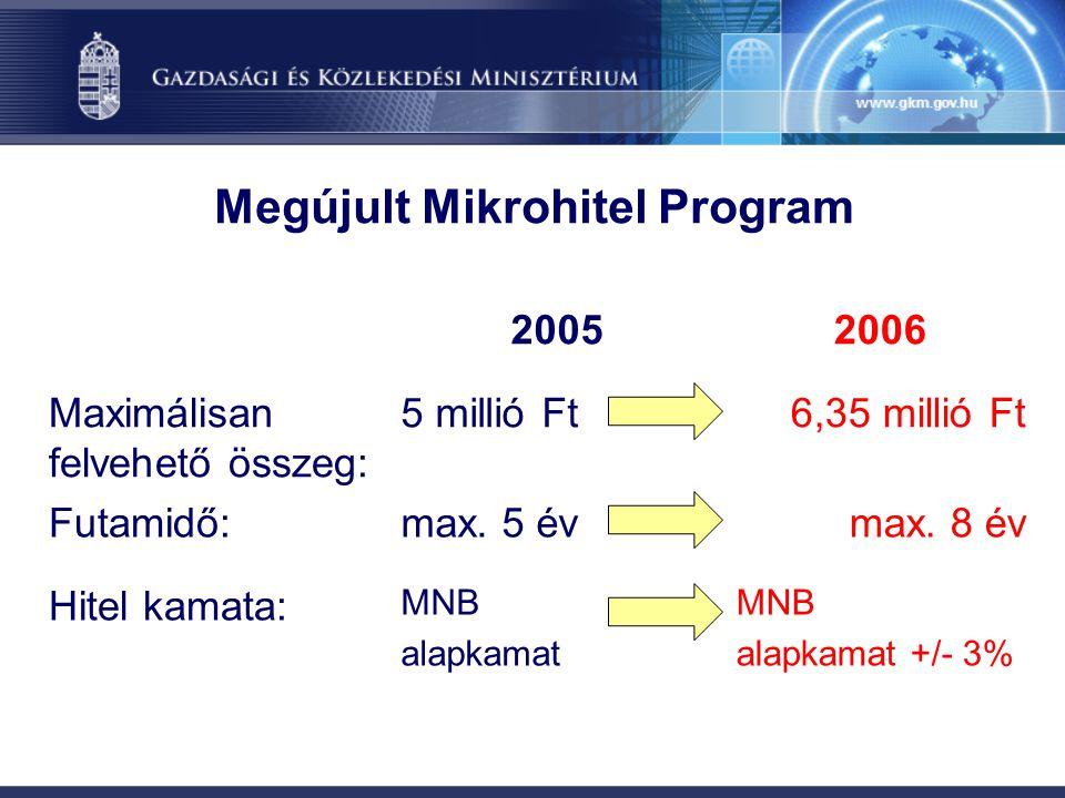Megújult Mikrohitel Program