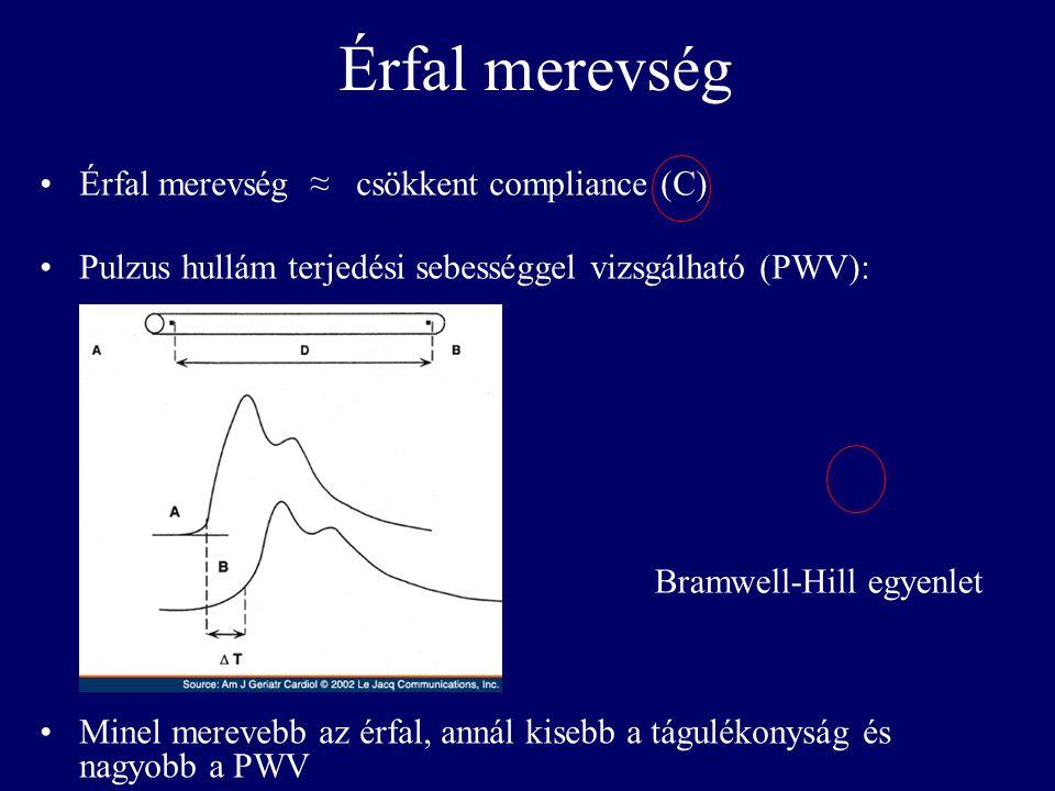 Érfal merevség Érfal merevség ≈ csökkent compliance (C)