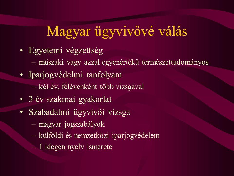 Magyar ügyvivővé válás