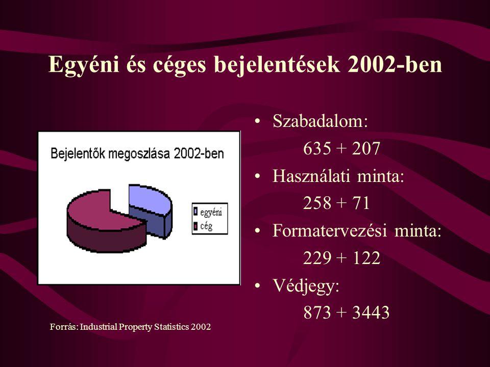 Egyéni és céges bejelentések 2002-ben