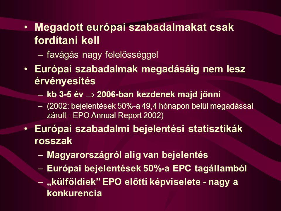 Megadott európai szabadalmakat csak fordítani kell