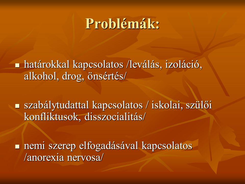 Problémák: határokkal kapcsolatos /leválás, izoláció, alkohol, drog, önsértés/