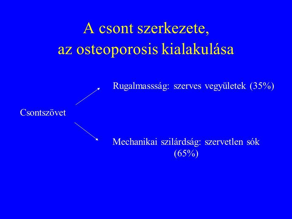 A csont szerkezete, az osteoporosis kialakulása