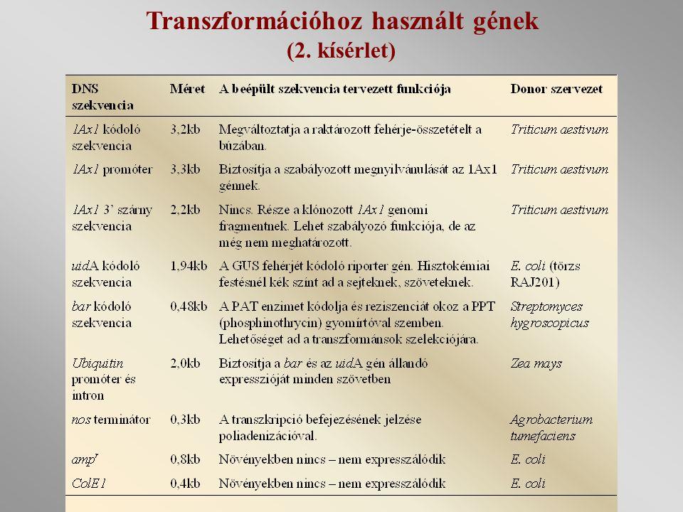 Transzformációhoz használt gének