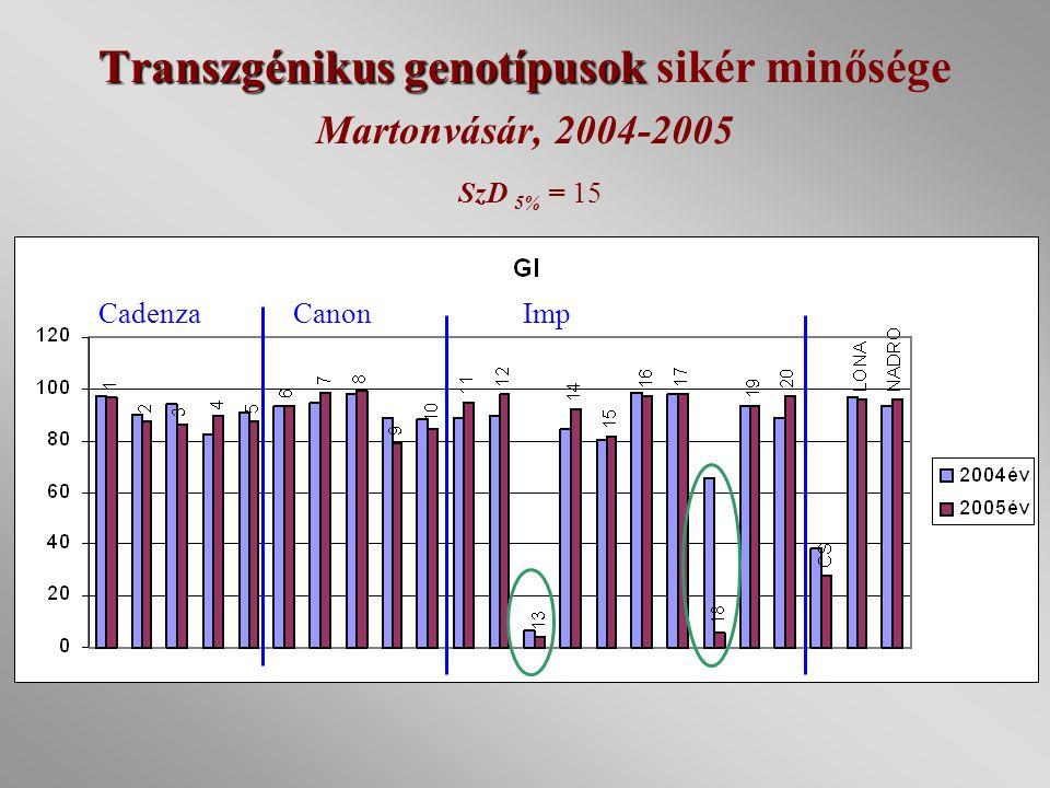 Transzgénikus genotípusok sikér minősége Martonvásár, 2004-2005 SzD 5% = 15