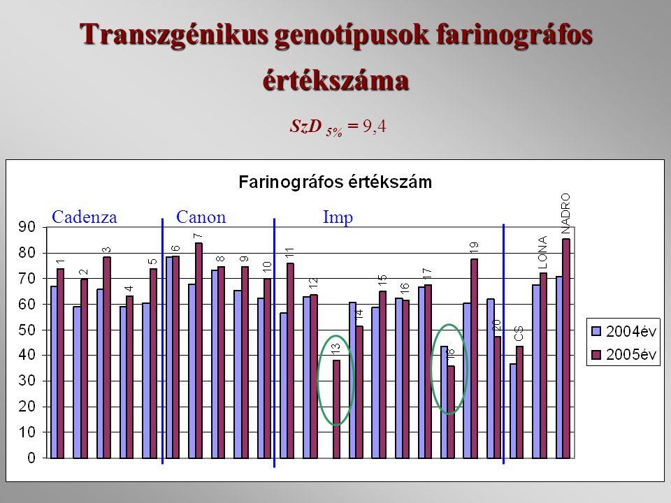 Transzgénikus genotípusok farinográfos értékszáma SzD 5% = 9,4