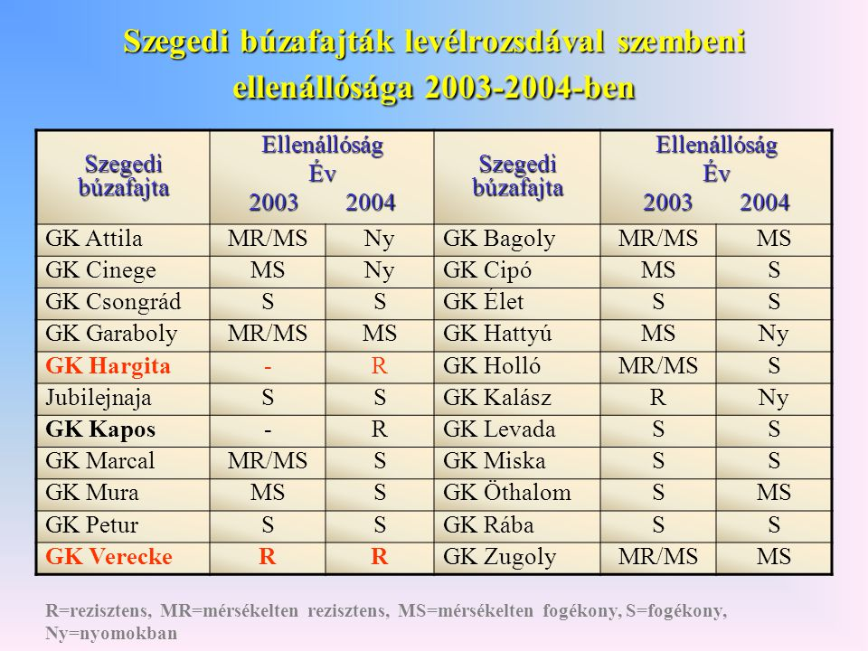 Szegedi búzafajták levélrozsdával szembeni ellenállósága 2003-2004-ben