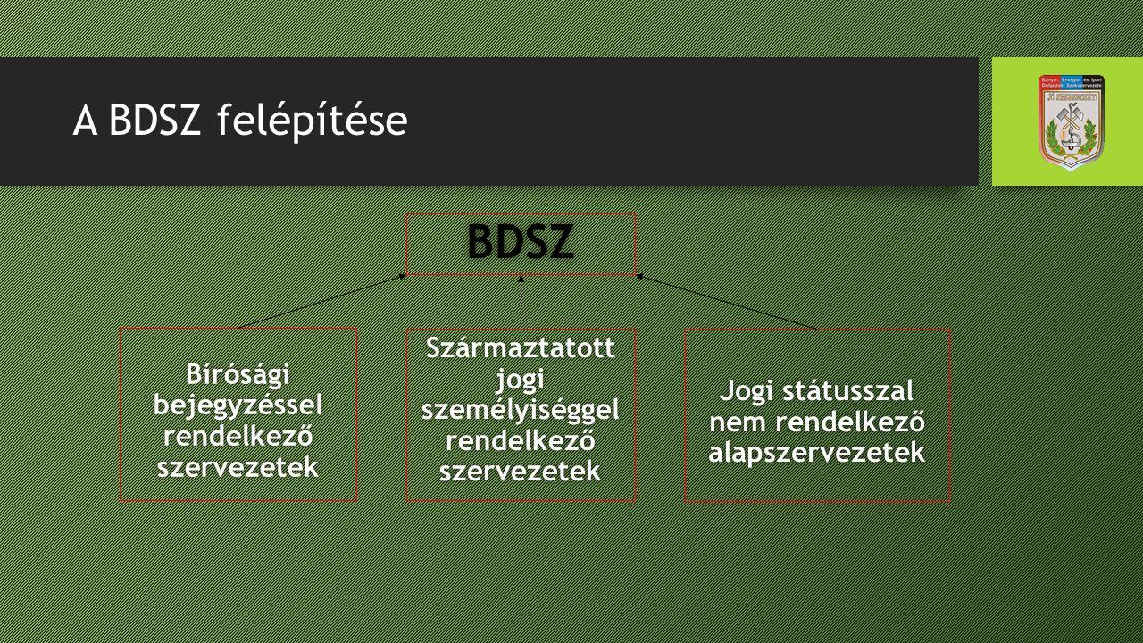 A BDSZ felépítése BDSZ. Bírósági bejegyzéssel rendelkező szervezetek. Származtatott jogi személyiséggel rendelkező szervezetek.