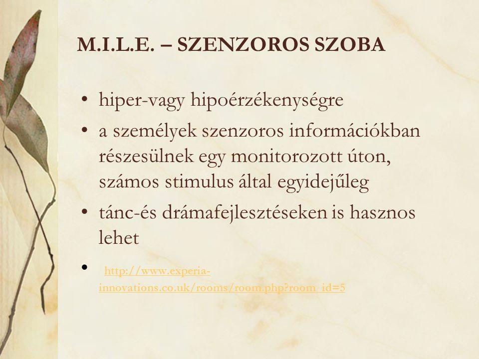 M.I.L.E. – szenzoros szoba hiper-vagy hipoérzékenységre.