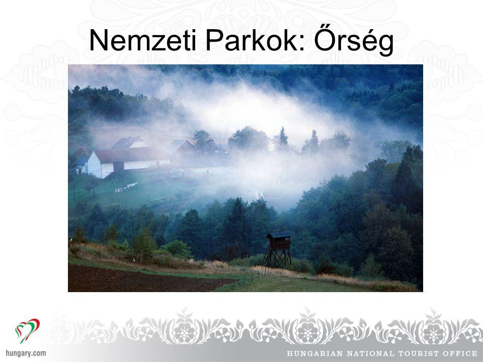 Nemzeti Parkok: Őrség
