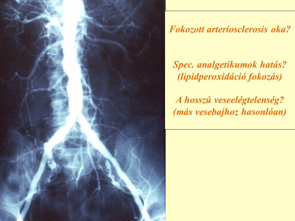 Fokozott arteriosclerosis oka