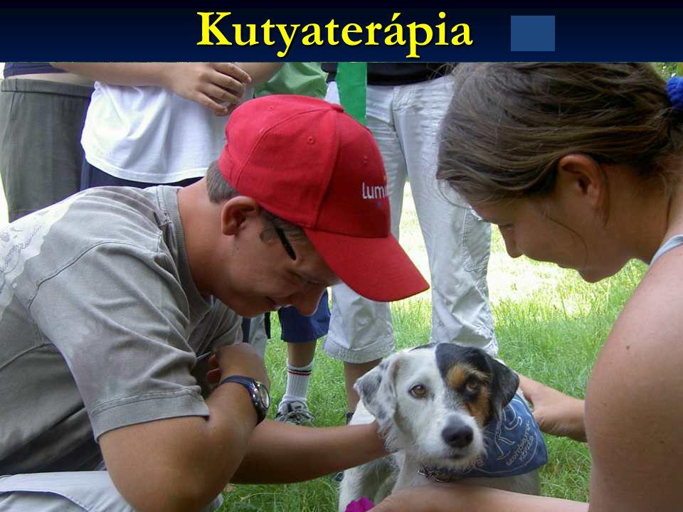 Kutyaterápia