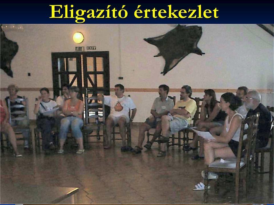 Eligazító értekezlet