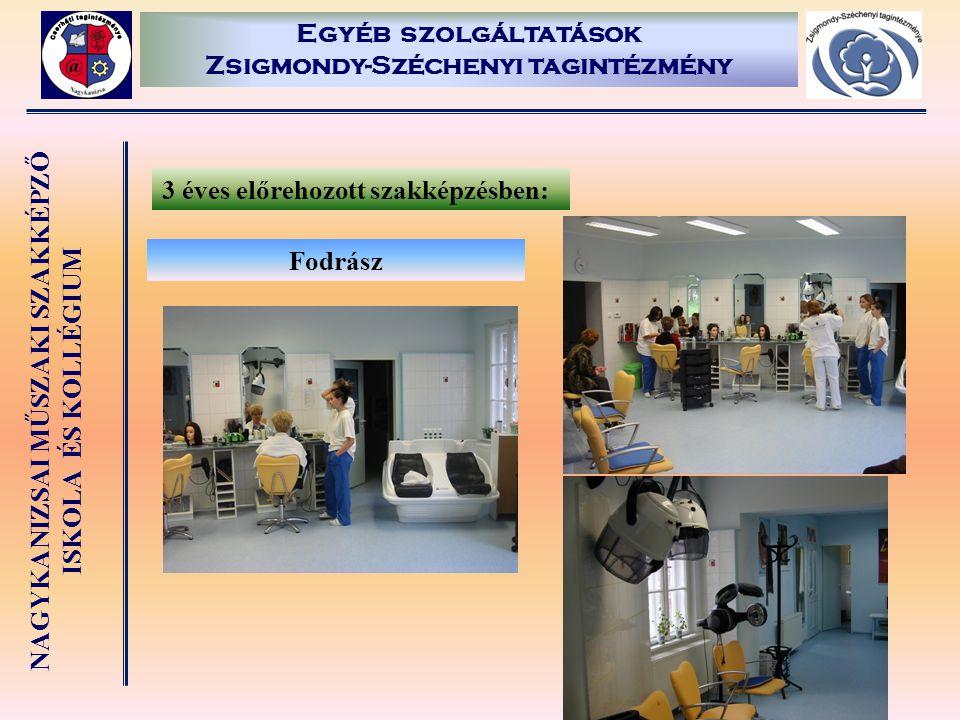 Egyéb szolgáltatások Zsigmondy-Széchenyi tagintézmény