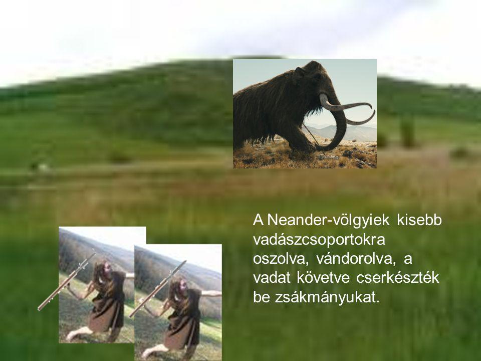 A Neander-völgyiek kisebb vadászcsoportokra oszolva, vándorolva, a vadat követve cserkészték be zsákmányukat.