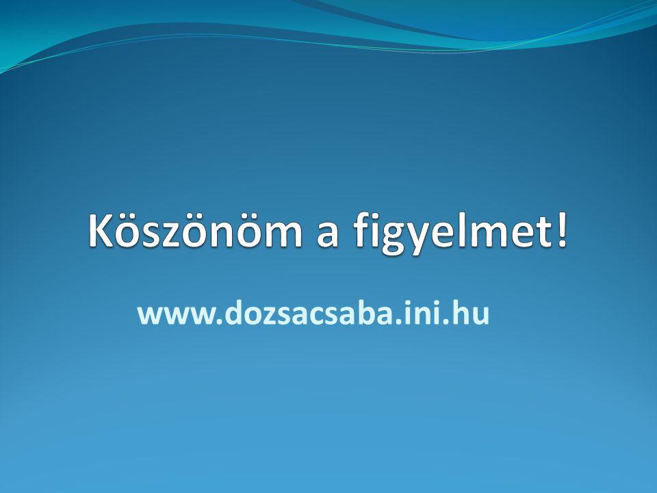 Köszönöm a figyelmet! www.dozsacsaba.ini.hu