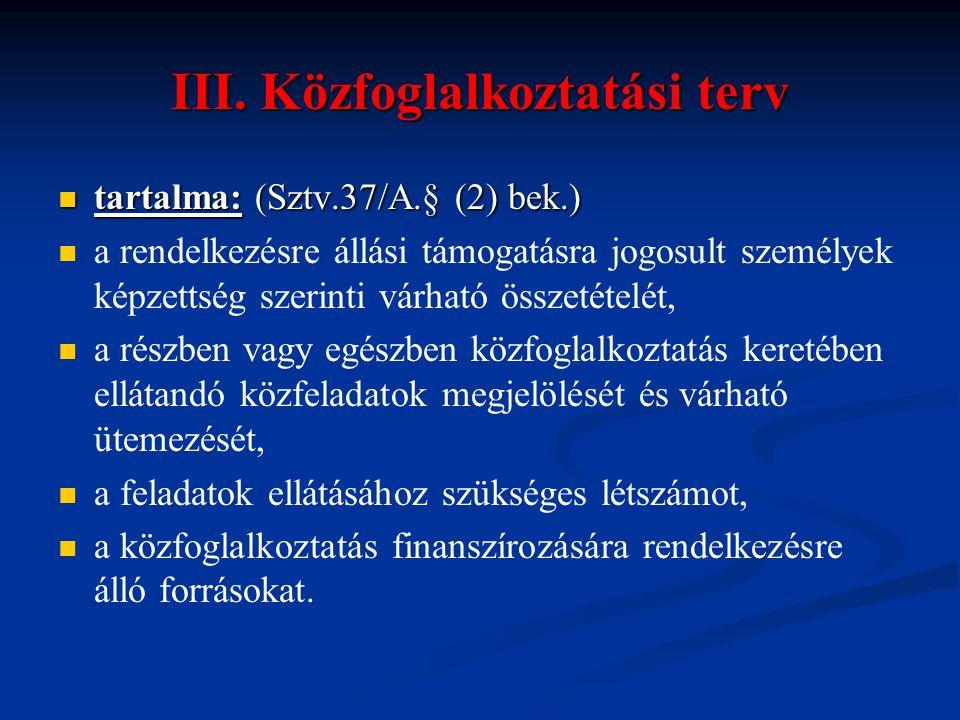 III. Közfoglalkoztatási terv