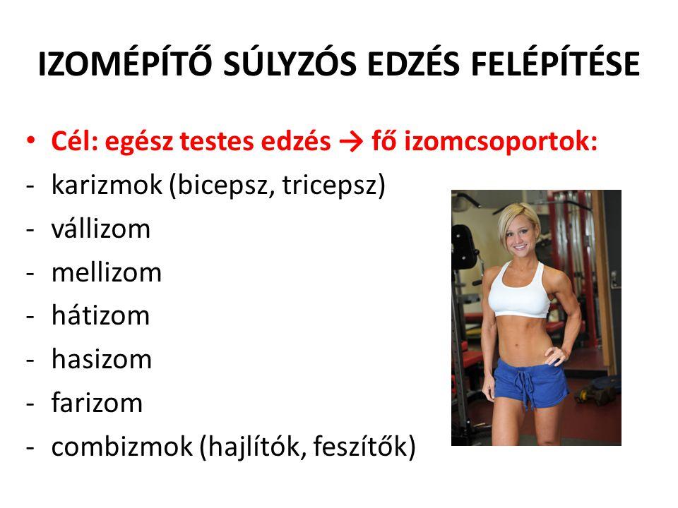 IZOMÉPÍTŐ SÚLYZÓS EDZÉS FELÉPÍTÉSE