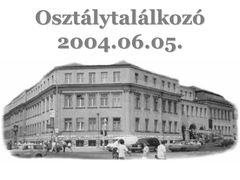 Osztálytalálkozó 2004.06.05.