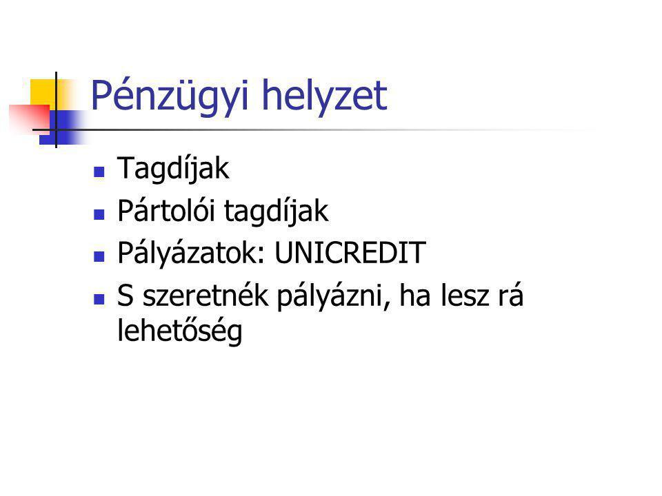 Pénzügyi helyzet Tagdíjak Pártolói tagdíjak Pályázatok: UNICREDIT