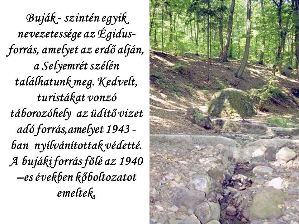 Buják - szintén egyik nevezetessége az Égidus- forrás, amelyet az erdő alján, a Selyemrét szélén találhatunk meg.