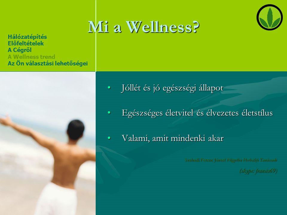 Mi a Wellness Jóllét és jó egészségi állapot