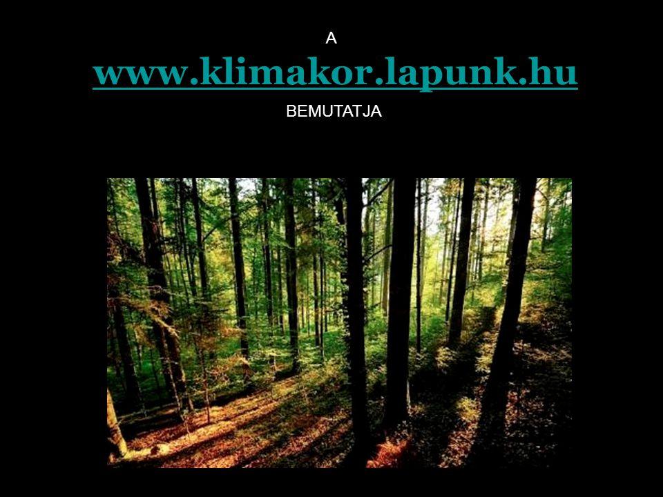 A www.klimakor.lapunk.hu BEMUTATJA